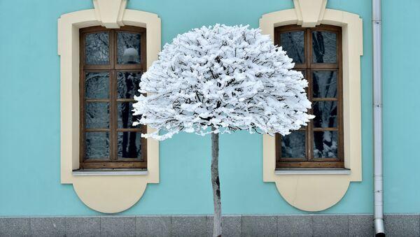 Sníh. Ilustrační foto - Sputnik Česká republika