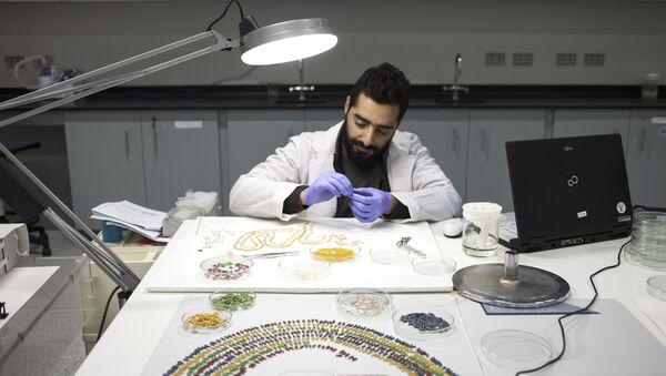 Restaurování náhrdelníku faraóna Tutanchamona v restaurátorské dílně Velkého egyptského muzea v Gíze - Sputnik Česká republika