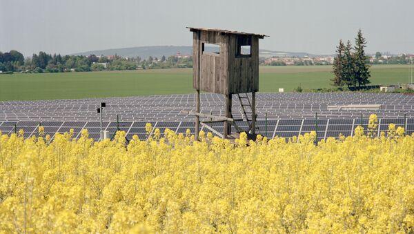 Zemědělství v Česku - Sputnik Česká republika