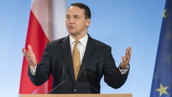 Tehdejší ministr zahraničních věcí Polska Radosław Sikorski, 2014 - Sputnik Česká republika