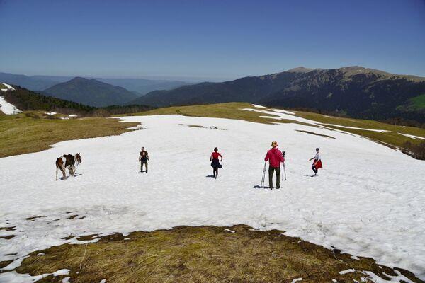Turisté na zasněžené pastvině Abago v severní oblasti Kavkazské chráněné krajinné oblasti. - Sputnik Česká republika