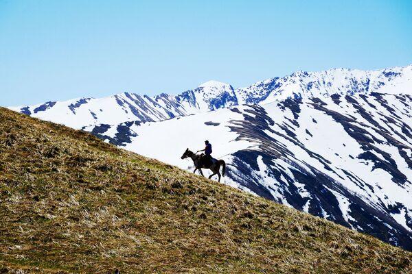 Jezdecká procházka na území pastviny Abago v severní oblasti Kavkazské chráněné krajinné oblasti. - Sputnik Česká republika